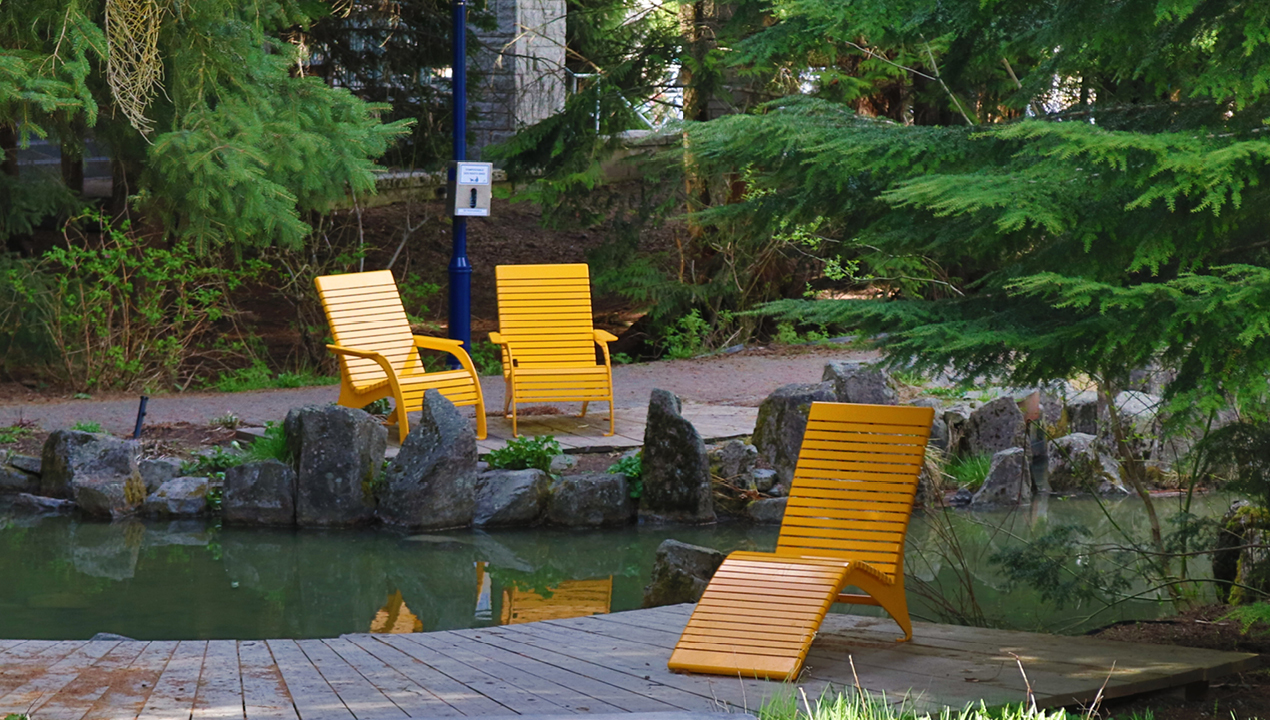 Yellow Lounge Chairs near River and Forrest
